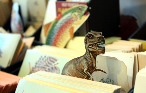 Rarr. Foursided Dino in flashcards display.
