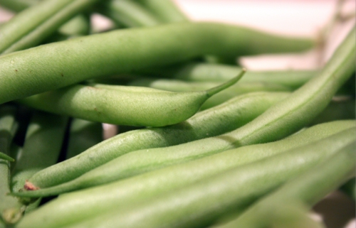 "If these were my Grandma's beans from her garden, they would be more ""furry"" and probably taste even 400% better. We used to eat loads of them with all the cousins in the summer while singing ""Eat your beans and you can go to Dairy Queen"" to the tune of a Sonic the Hedgehog boss fight."