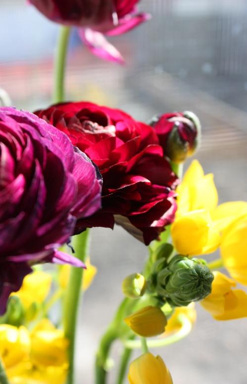 sunday_flowers3