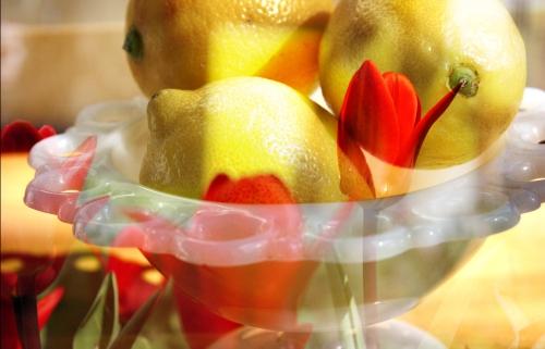 lemons_tulips