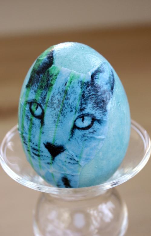 Porp egg.