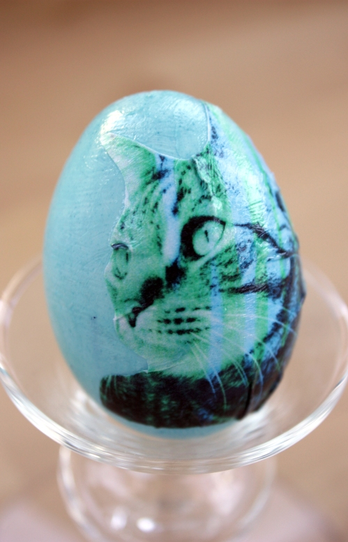And then I decided to make two bonus cat eggs. Why not?