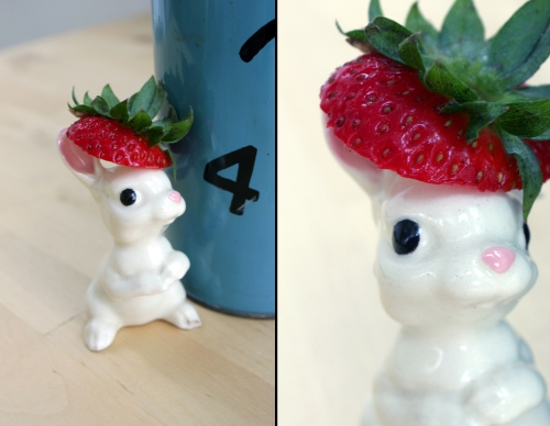Curious Bun was curious about all the strawberries, and wanted to be involved somehow. Since her mouth is much too small to eat a big berry, she fashioned a lovely hat for herself and had some shots taken.