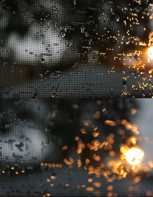 These are more like paintings than photos. Back-lit droplets on back porch screens. Love it.