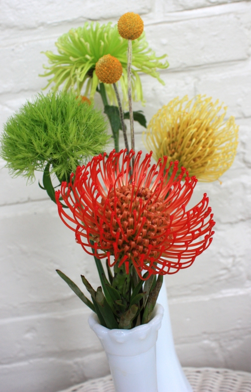 Here is my third string DPH's for the day. I am really into flower arranging according to Dr. Suess.