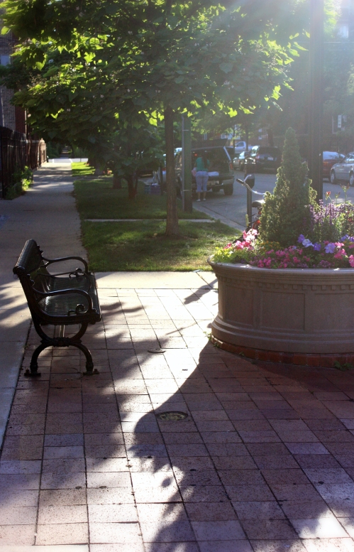 This bench and planter area can be found on each corner of the main Clark street strip of Andersonville. This evening sun can be found in the summer. It cannot be found when walking home from the train at 5 pm in January. I have to remember this shot when I am wearing boots and down in the dark.