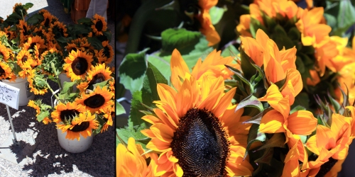 Other Summer happenings at the market include the arrival of many buckets of sunflowers. People go nuts over these. I dare you to find someone on their lunch hour holding a bunch of sunflowers that isn't beaming.